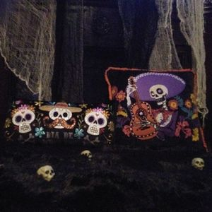 NWOT SET of 2 Day of Dead Throw pillows BEAUTIFUL